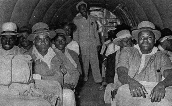 wenela-miners