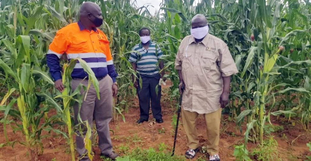 ZCDC ups the ante in food security