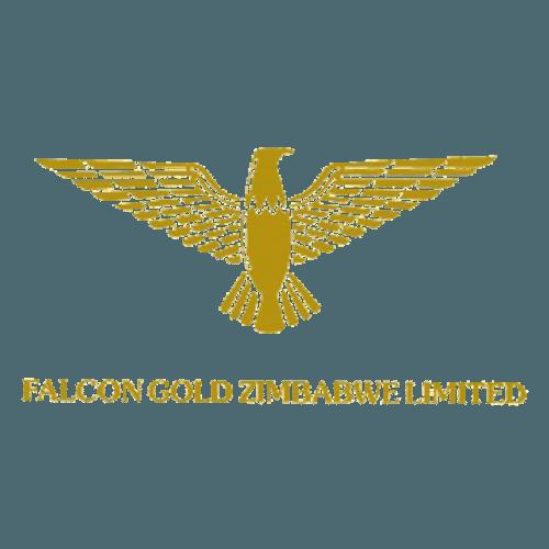 Falcon gold logo